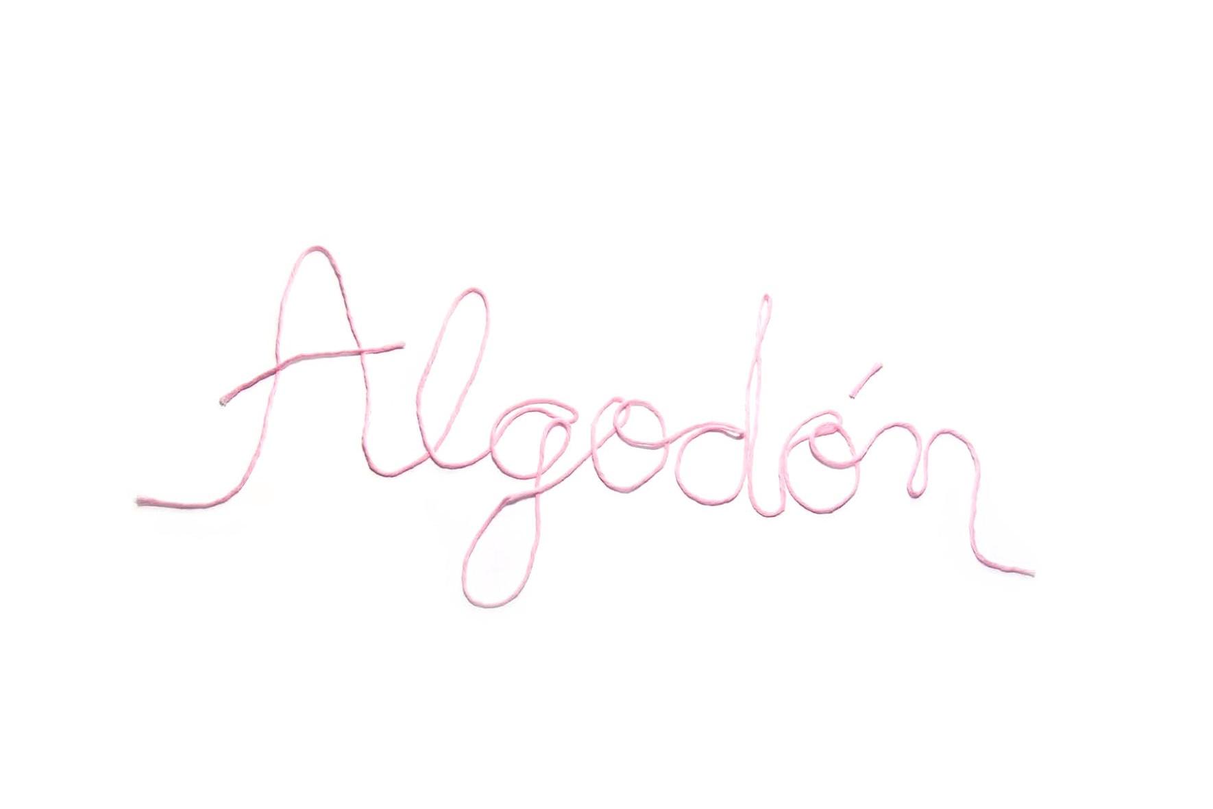 misskits_brochure_lettering_algodon