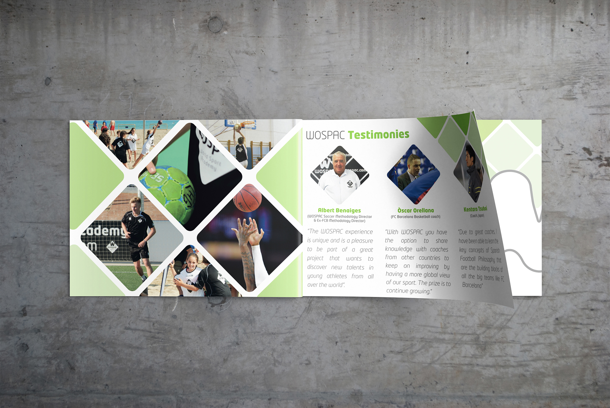 wospac_design_brochure_1