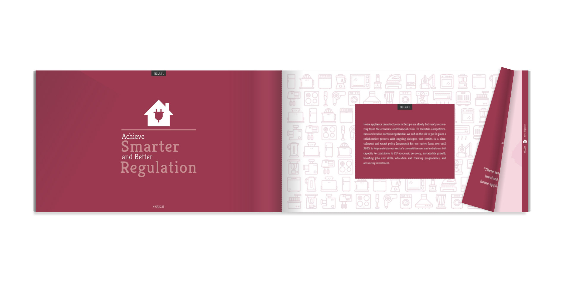 ceced_annual_report_design_infographic_1