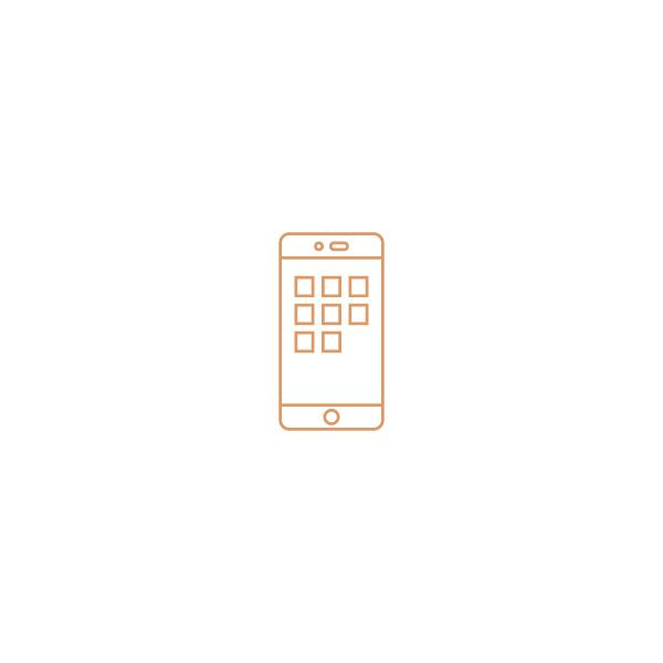 icon_Web&App